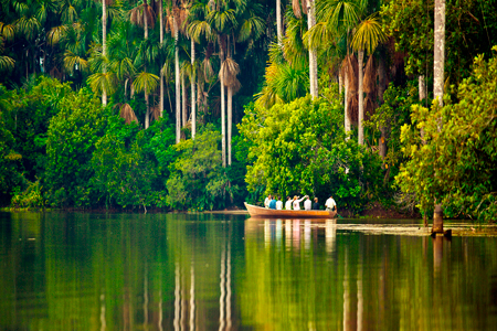 Tours in Tambopata